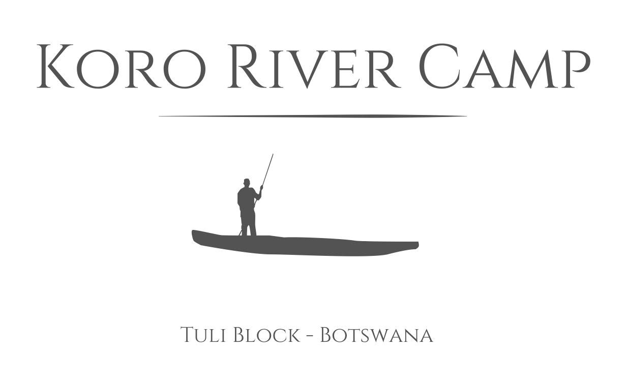 Koro River Camp